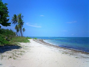 Virginia_Key_Beach